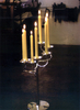 7-light Candelabrum ::